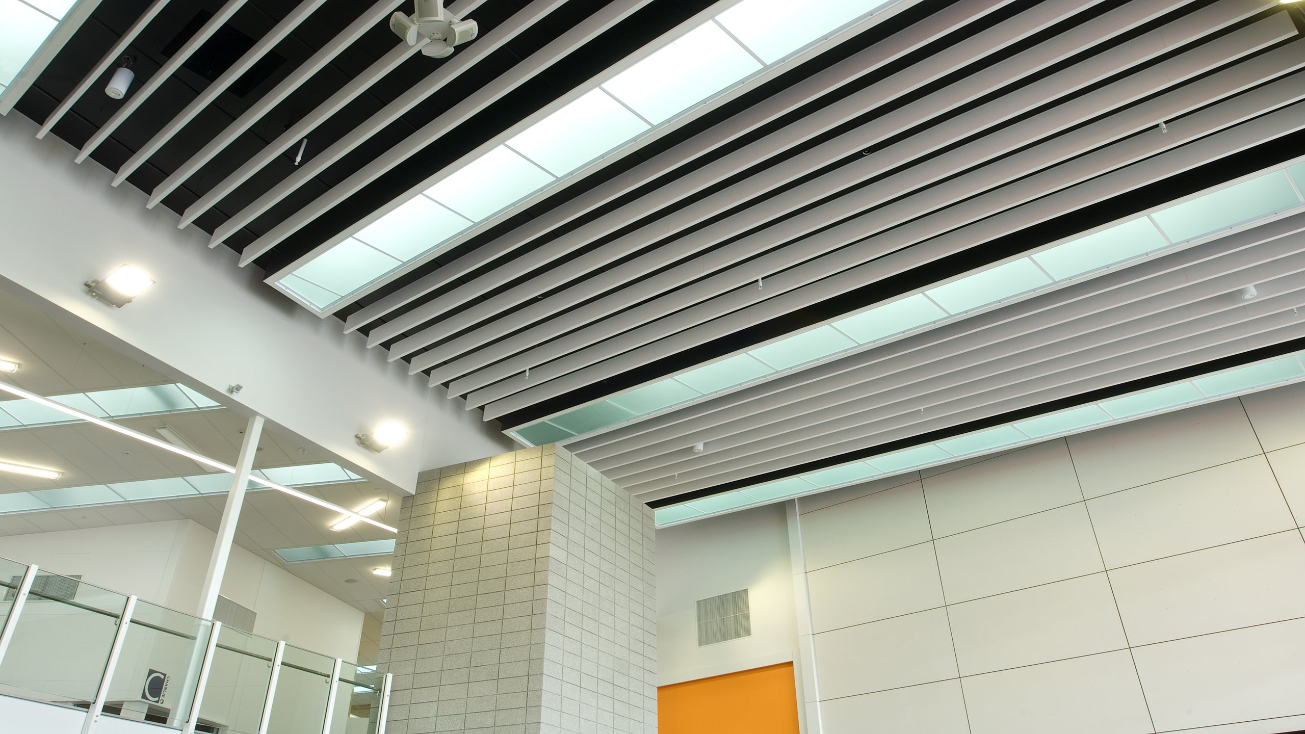 Hobsonville Point intermediate entrance Atrium showing white continiuos Baffle Beams direct fixed to ceiling
