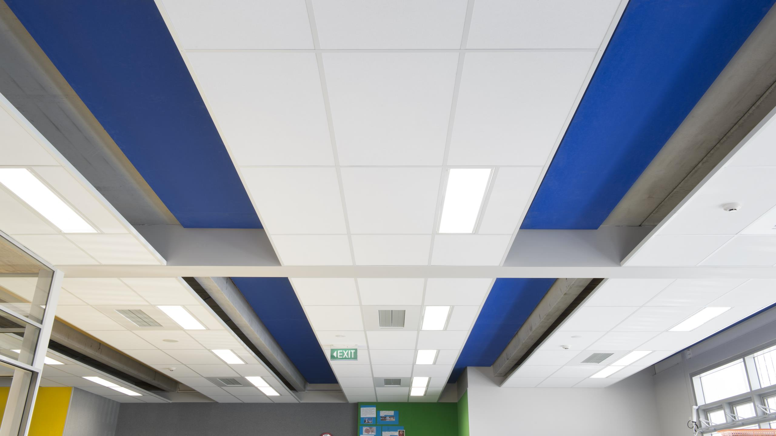 St Josephs School - Triton 50 with Blue Sonatex