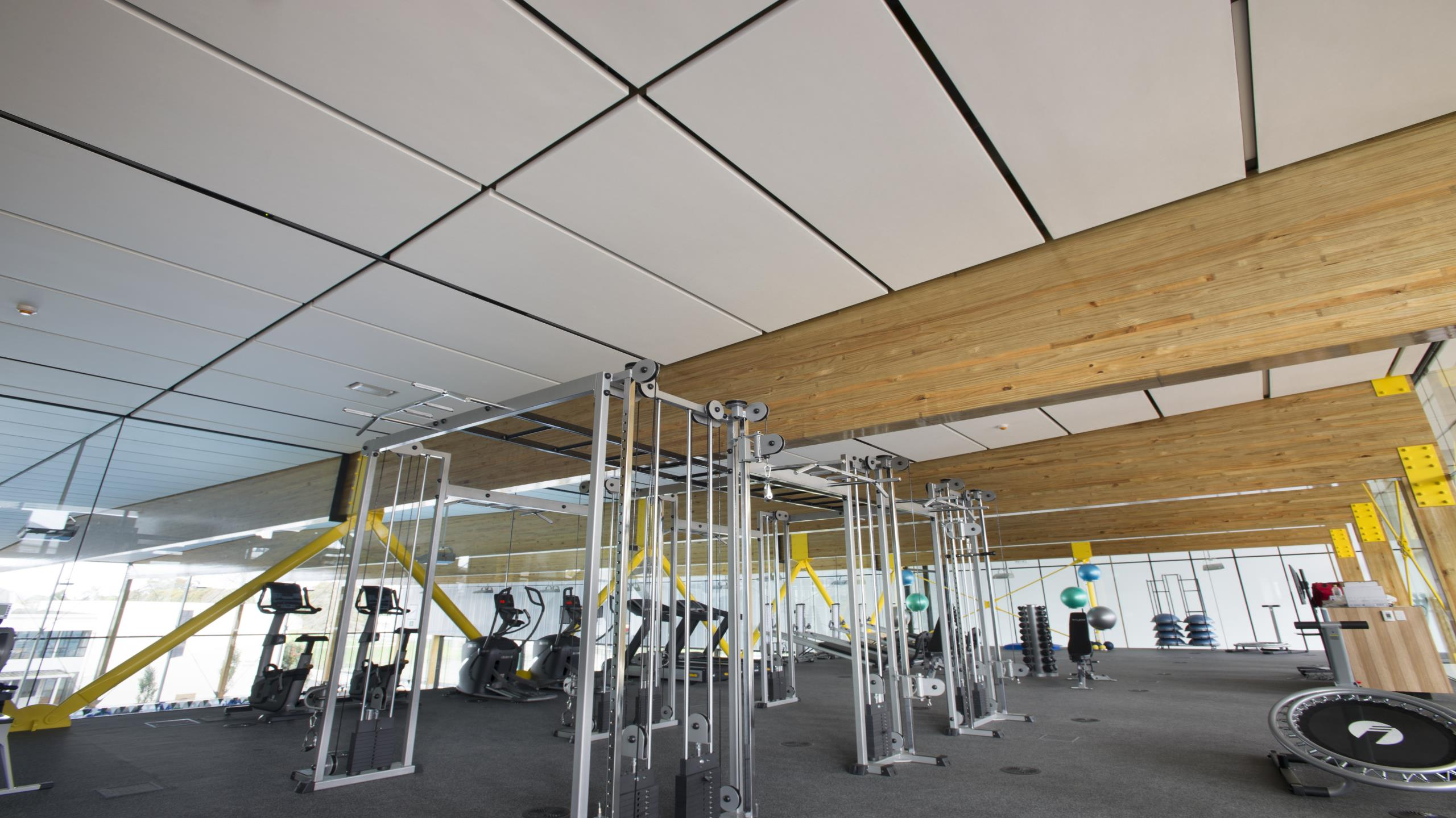 St Cuthberts Girls School swimming pool complex ceiling showing Triton Cloud pool panels installed in the gym area
